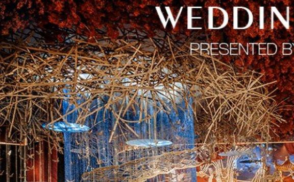 第015期:SketchUp创建婚礼鸟巢吊顶